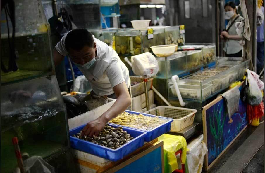 eDoctor - Tìm ra ổ lây nhiễm Covid-19 nghiêm trọng tại Bắc Kinh